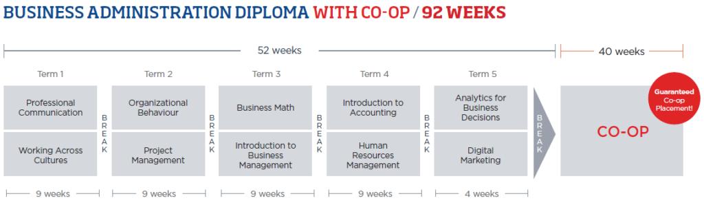 programa de estudos business administration com co-op ilac